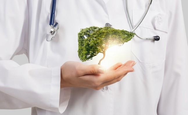 http://taghzie.ir/diet/diet-for-disease/liver-and-pancreas-diet